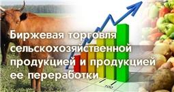 Информация о биржевой торговле сельскохозяйственной продукцией и продукции ее переработки
