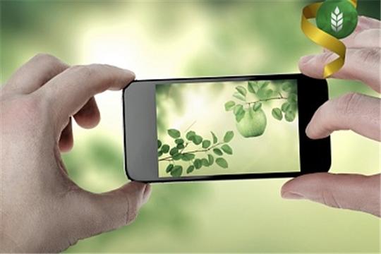 Аграрии смогут выявлять болезни плодовых деревьев с помощью гаджетов