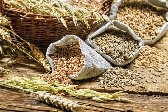 Cемена яровых зерновых и зернобобовых культур К(Ф)Х засыпаны в объеме 47,4 тыс. тонн
