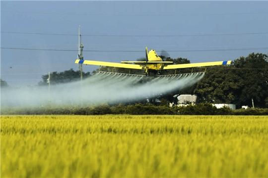 Пестициды возьмут под контроль
