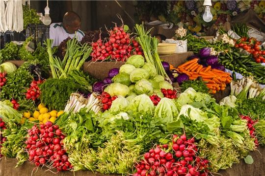 Лучшие торговые места нужно выделить для тех, кто продаёт продукты со своего огорода или фермерского хозяйства