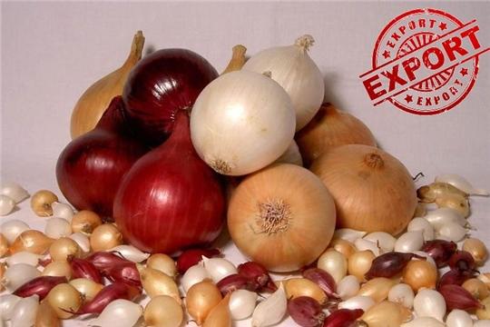Чувашия экспортировала лук-севок на 88 тыс. долларов США