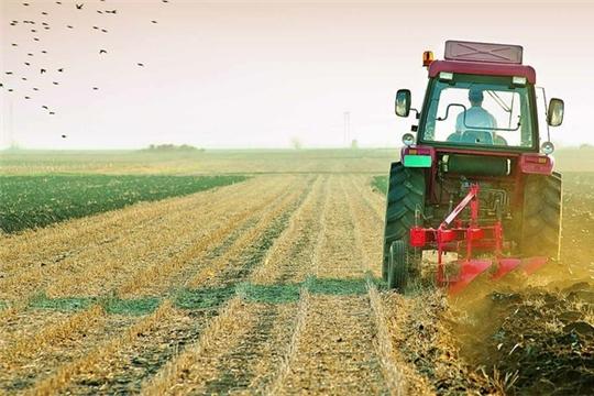 В российском законодательстве может появиться термин «бесхозяйная земля».