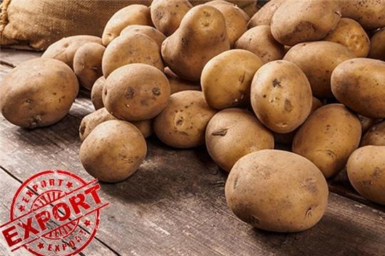 Картофелеводы Чувашии готовятся к выставке