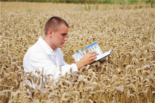 Новый закон о семеноводстве повысит качество сельхозпродукции