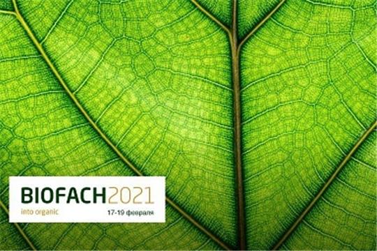 Производство органической сельхозпродукции в России ежегодно растет на 10%