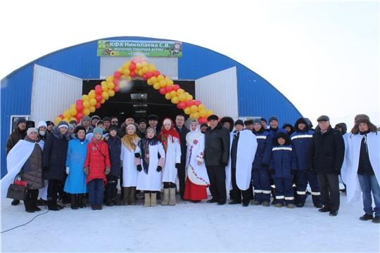 Братья Николаевы из Канашского района решили основать свое дело и построили ферму на 100 коров