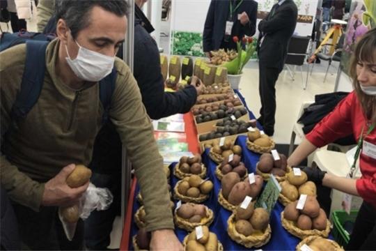 В Чебоксарах прошла межрегиональная отраслевая выставка «Картофель-2021»