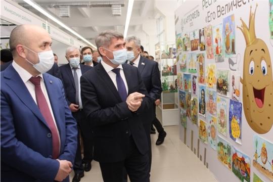 В республиканском творческом конкурсе «Его величество Картофель» приняло участие 1308 работ