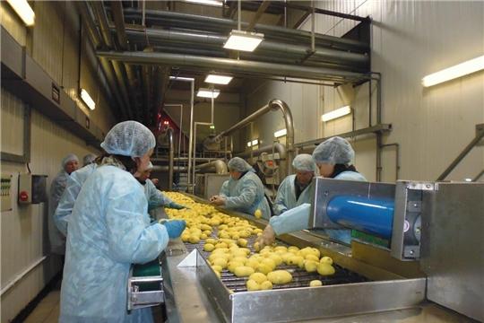 В Чувашии будут помогать сельхозпредприятиям, занимающимся глубокой переработкой