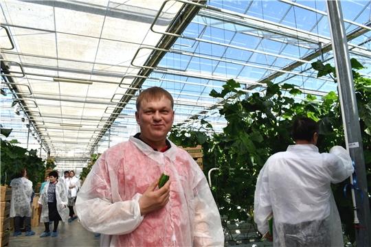 """""""Школа фермера"""": тепличники осваивают азы овощеводства"""