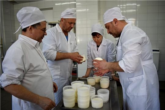 """""""Школа фермера"""": сыроделы осваивают новые рецепты"""