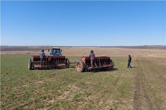 Весенне-полевые работы в Ибресинском районе