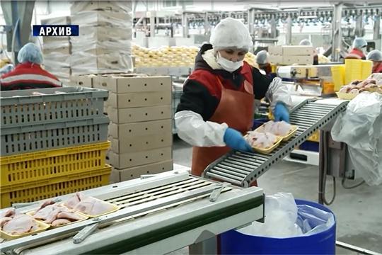 В Чувашии реализуются меры государственной поддержки аграриев
