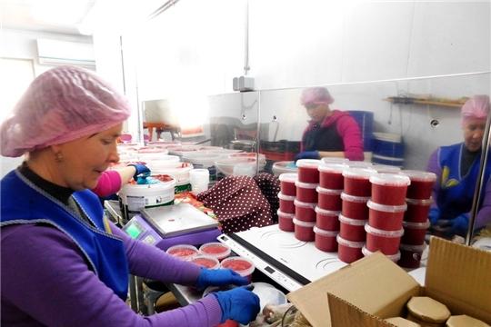 «Школа фермера»: день обмена бесценным опытом на экоферме «Шуйские ягоды»