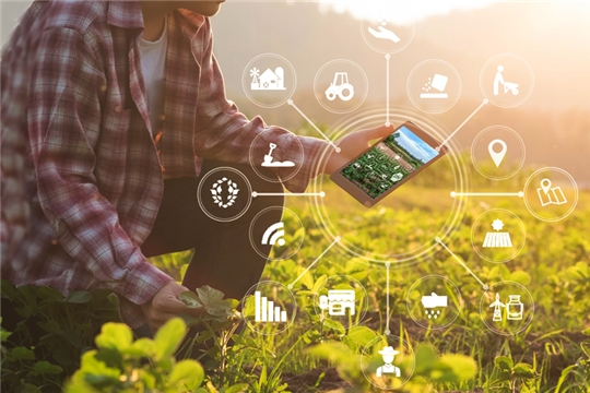 Информсистема цифровых сервисов в АПК начнет работу с 2022 года