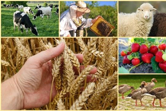 Меры господдержки фермеров расширяются
