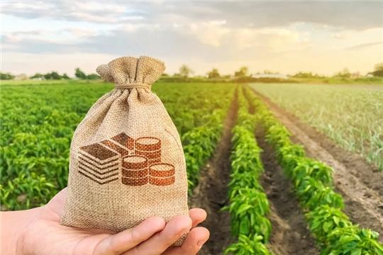 Аграрии Чувашии активно используют механизм льготного кредитования