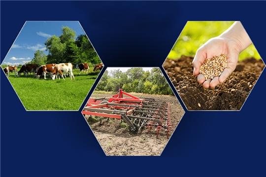 В Чувашии продолжает действовать проект «Акселерация субъектов малого и среднего предпринимательства»