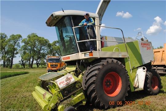 В Шемуршинском районе началась заготовка кормов