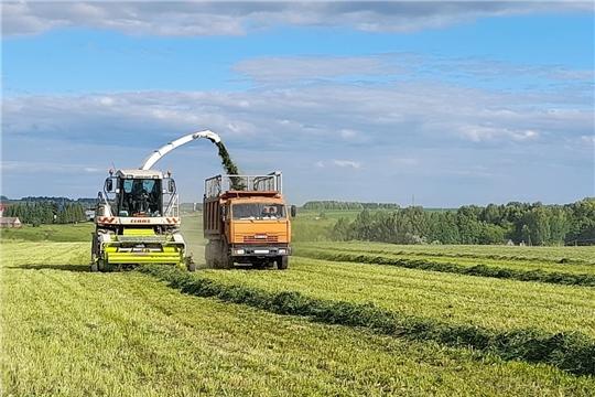 Хозяйствами Чебоксарского района скошено 570 га многолетних трав, заложено 1 724 тонны сенажа