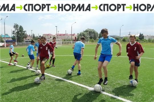 Чувашия получила федеральные субсидии на развитие базовых видов спорта по проекту «Спорт – норма жизни»