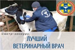Смотр-конкурс на звание «Лучший ветеринарный врач»
