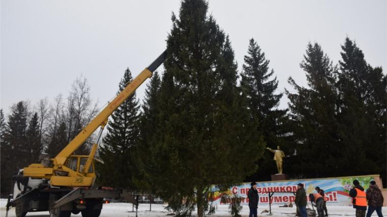 В Шумерле установили главную елку города