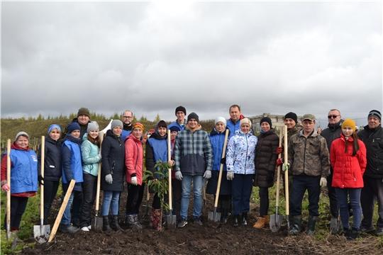 Работники администрации Чебоксарского района приняли участие в акции «Сохраним лес»
