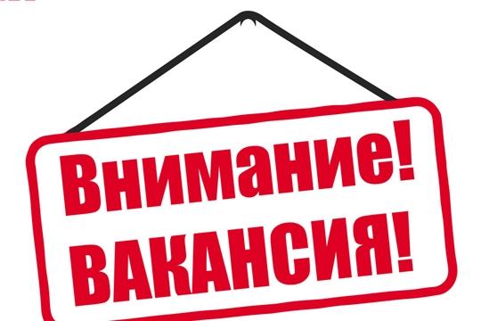 Минэкономразвития Чувашии объявляет конкурсы на замещение вакантных должностей