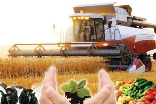 Производство сельхозпродукции на 100 га сельхозугодий