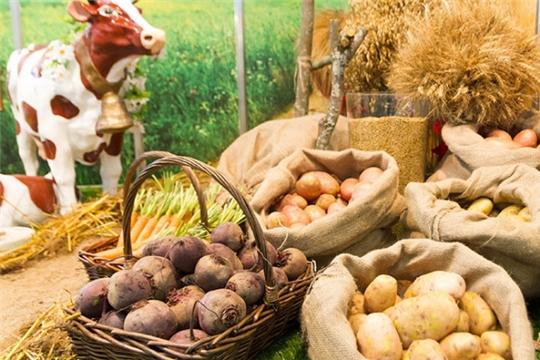Об итогах развития сельского хозяйства за январь-сентябрь 2019 года
