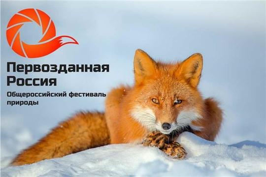 С 25 по 29 ноября в Алатыре, как и по всей республике, пройдёт Фестиваль экологического кино