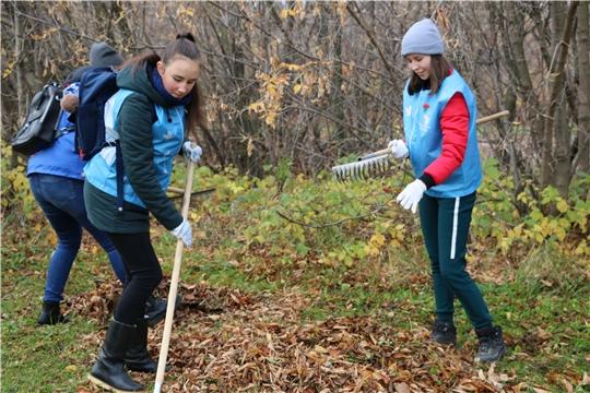 В Чебоксарах подвели итоги осенним экологическим мероприятиям