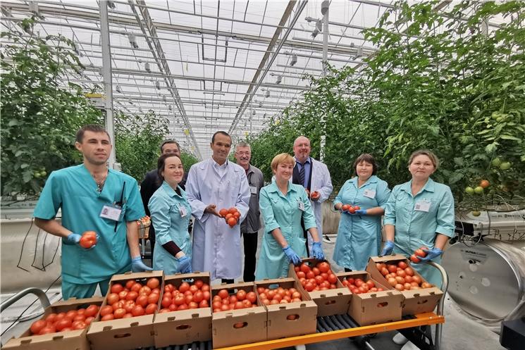Михаил Игнатьев посетил готовящийся к открытию тепличный комплекс «Новочебоксарский»