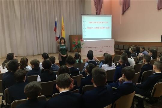 В МБОУ «Гимназия №8» заработала школа волонтёра!