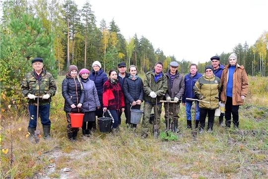 Ибресинский район поддержал всероссийскую акцию «Сохраним лес»