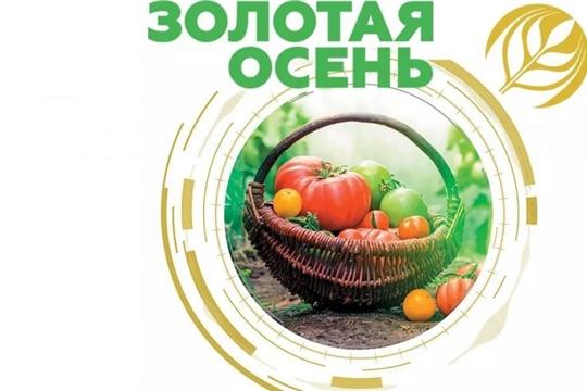 К(Ф)Х Ястребова Н.Н. Ибресинского района - серебряный призер агропромышленной выставки «Золотая осень»