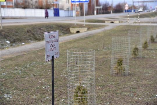 В поселке Ибреси открыта Аллея Памяти ветеранов футбола и волейбола