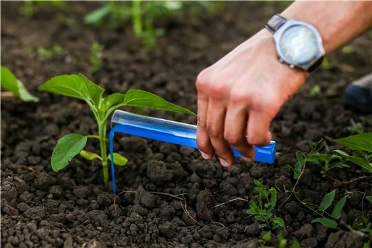 Российский стартап разработал удобрение для увеличения урожая на 15-25%
