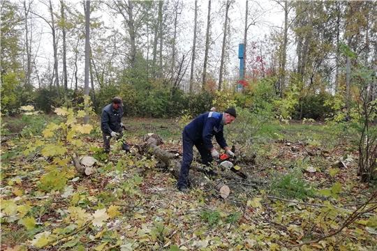 Красночетайский район присоединился к всероссийской акции «Сохраним лес»