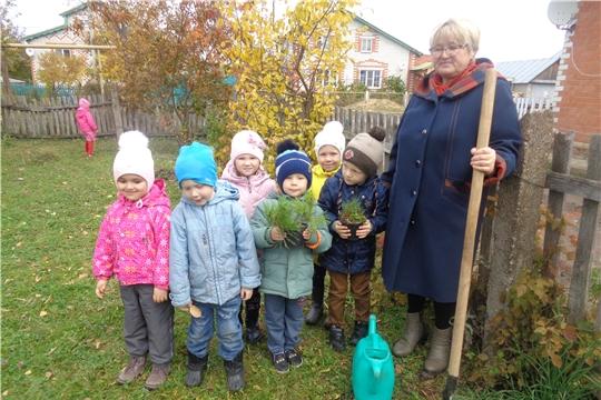"""В детском саду """"Рябинушка"""" прошла экологическая акция «Посадим деревья»"""