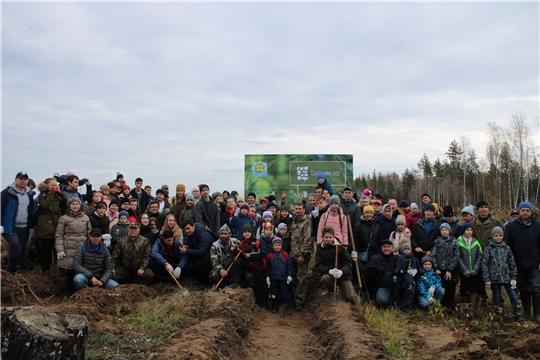 К акции «Сохраним лес» присоединились отцы Чувашии