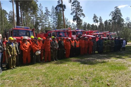Председатель Правительства РФ Дмитрий Медведев отметил Чувашию в числе регионов, где успешно проводятся мероприятия для охраны лесов