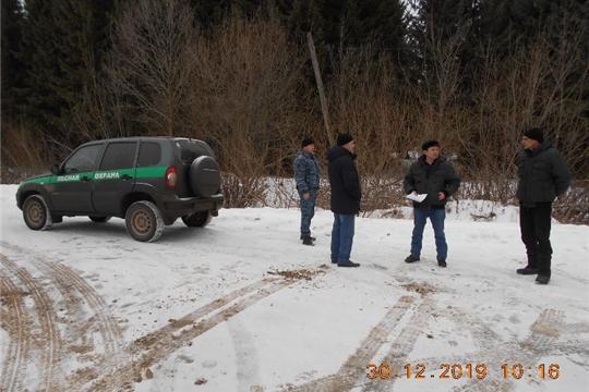 В канун новогодних праздников лесничества проводят рейды для предотвращения незаконной рубки елей
