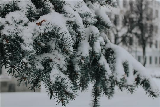 Поздравление министра природных ресурсов и экологии Чувашской Республики И.В. Исаева с Новым годом и Рождеством