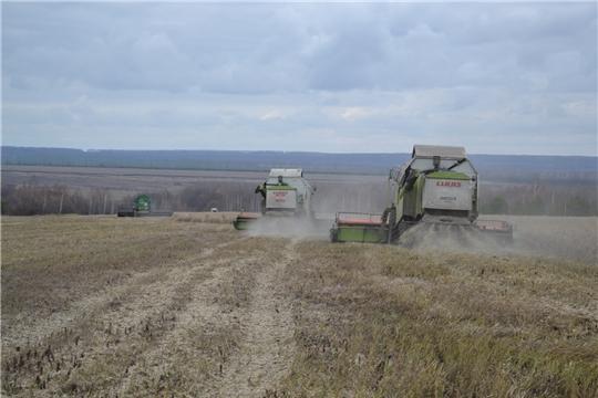 На полях хозяйств Алатырского района завершается уборка рапса и льна