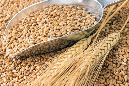 Урожайность зерновых, картофеля и овощей в Чувашии выше средней урожайности по РФ
