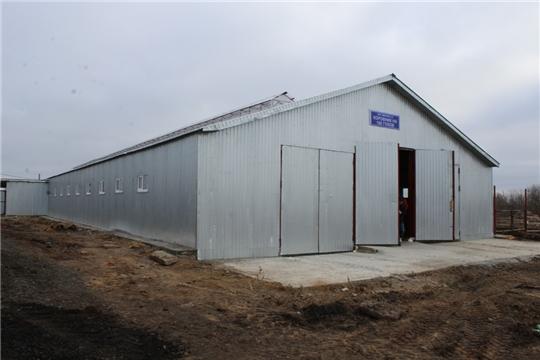 В КФХ «Иванов Н.А.» в торжественной обстановке состоялось открытие нового коровника на 100 голов крупного рогатого скота