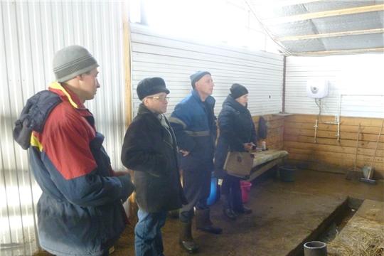 В животноводческих хозяйствах республики напряженная пора - зимовка скота